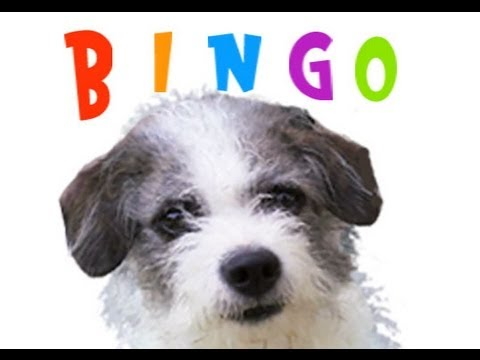 BINGO was his Name-o Nursery Rhyme song