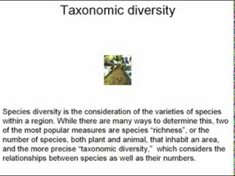 How To Define Biodiversity