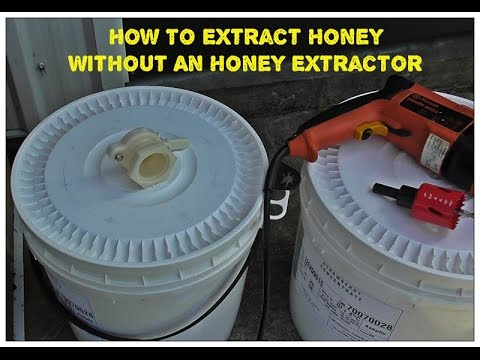 How To Extract Honey Without An Honey Extractor
