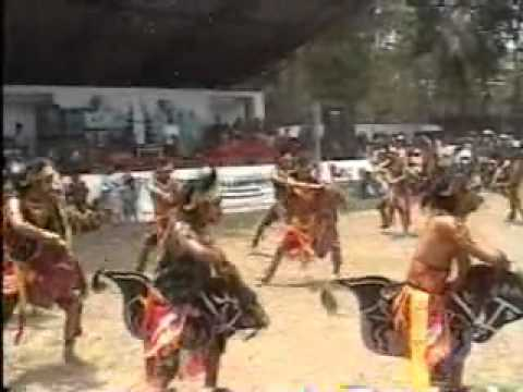 Festival Kuda Lumping Temanggung Di Pikatan Indah - 02.wmv video