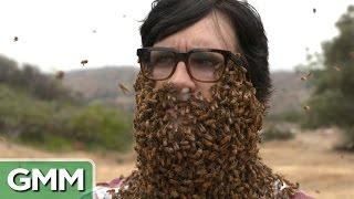 ¡10,000 abejas en la cara!
