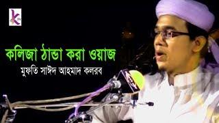 Patli Tafsir   Mufti Sayed Ahmad Kalarab   Bangla New Waz 2017at Sylhet