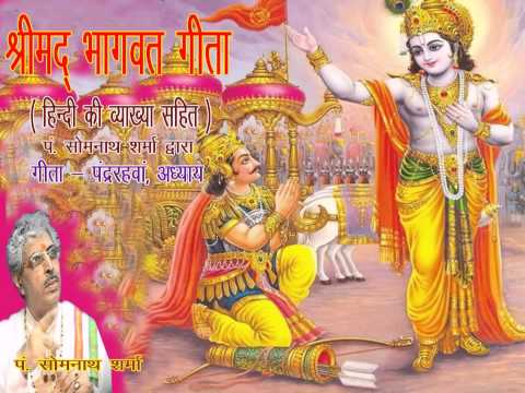 Shrimad Bhagwat Geeta Adhyay 15 Meaning In Hindi By Somnath...