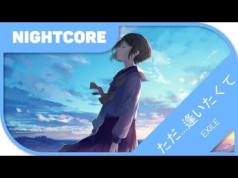 🎼【Nightcore】-  ただ…逢いたくて/Tada…Aitakute 『EXILE』