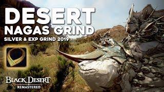 Black Desert ► 10 Hours at Desert Nagas Grind | 27 Million per hour | Silver/EXP Grind Guide (2019)