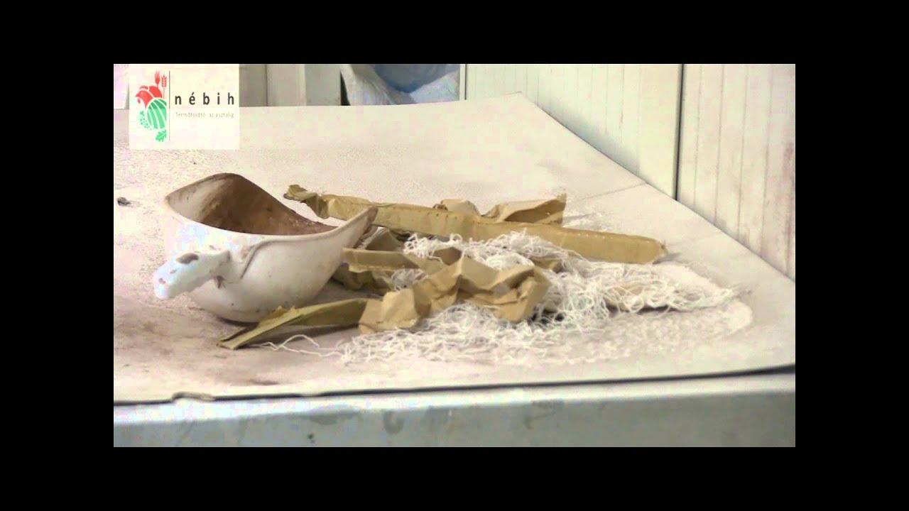 Egér volt a szaloncukorban - videó