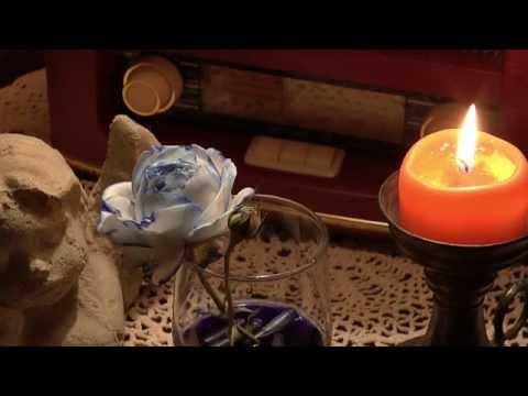 Rosen Blau Färben
