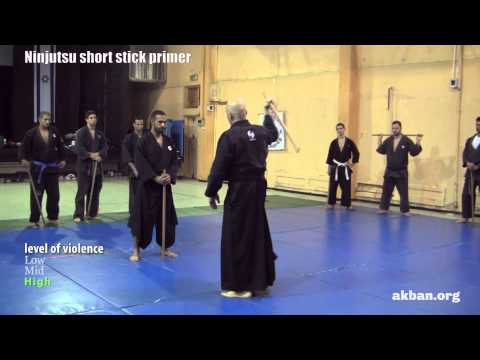 Ninjutsu 'Stick fighting' basics - Hanbo training for the AKBAN wiki Image 1