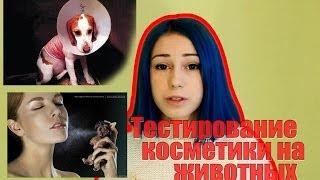 Тестирование косметики на животных! Жестокость в нашем мире