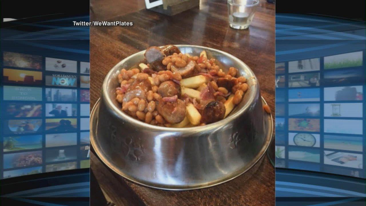 Doggy Dinner | ABC News
