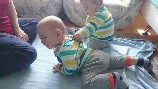 Dünyanın En Küçük Güreşçi İkizleri ★ Eğlenceli İkiz Bebek Ve Oyun Videoları ★