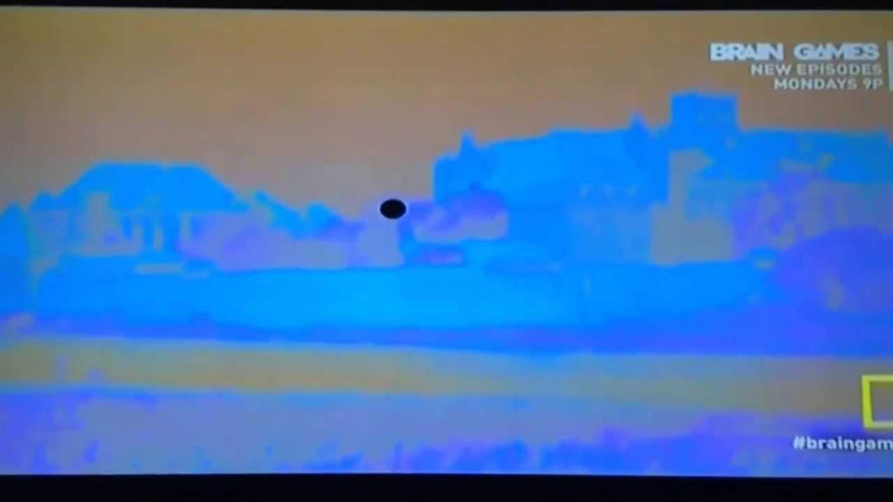 Brain games tv show attraction