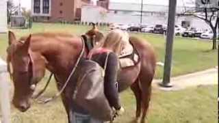 Virginia woman rides horse to DMV