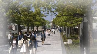 【福岡大学公式チャンネル】キャンパスグラフィティ2015