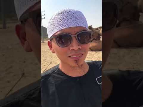 Youtube rekomendasi travel umroh murah