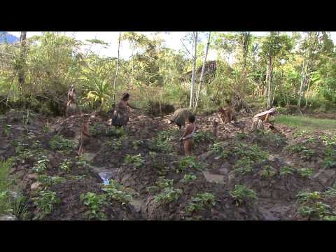 Huli Wigmen The  Daily Life by Global Vision Movie Papua New Guinea