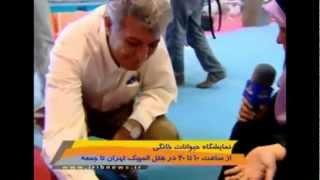 نمایشگاه حیوانات خانگی در ایران