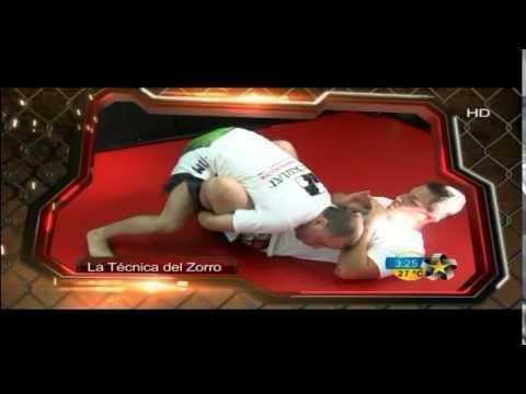 SALIDA DE GUARDIA MARIPOSA - Aprende MMA y BBJ en Monterrey