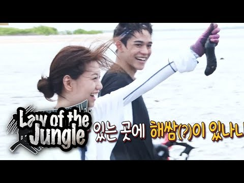 Lucas Goes Where The See Cucumbers Are! [Law Of The Jungle Ep 338]
