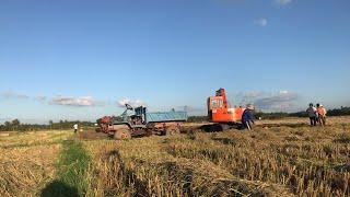 Xe Ben đổ đất và máy xúc đất làm việc tắp nập | kubota Nguyễn khắc tăng