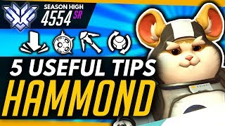 Overwatch | Top 5 Hammond Tips And 1 MAJOR Mistake (ft Yeatle)