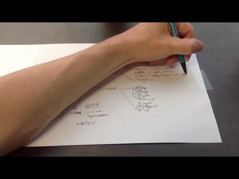 DNA and RNA Viruses Mnemonic for USMLE Step 1