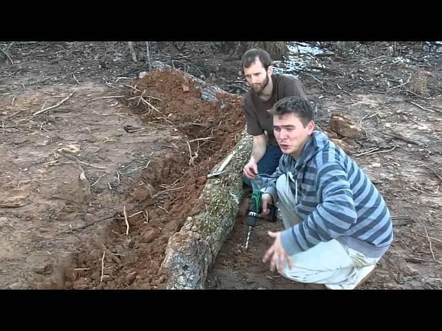 DIY - How To Grow Gourmet Mushrooms At Home - Mushroom Farming part 2