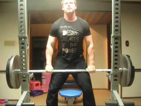 225 lb Strict Seated Shoulder Press (no back support) & Other Stuff (at 205 lbs) Image 1