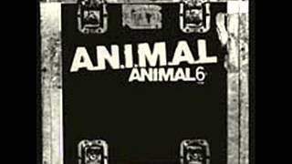 Watch Animal Atropello video