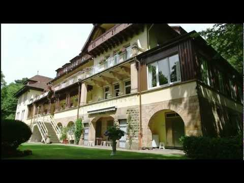 Villa Medica 2012 Introduction