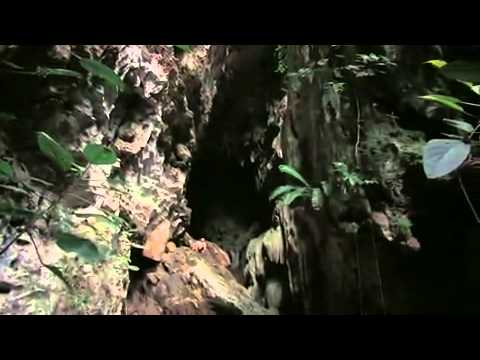 Be One With Belize   Part 4   The Ancient Maya