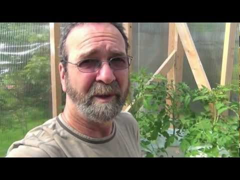Hydroponic Greenhouse Update, Monitoring Your Nutrient Levels And Ph
