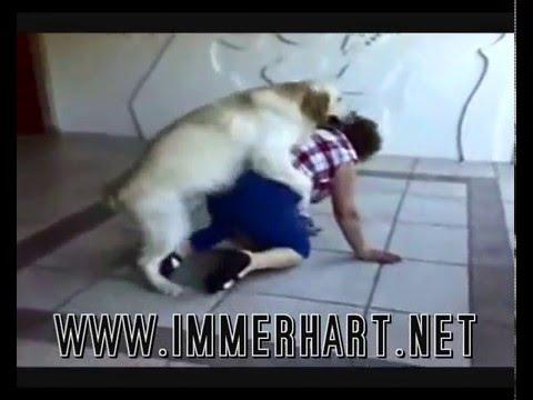 doggy style with kamagra