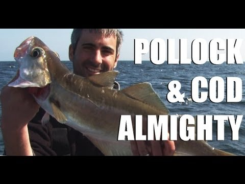 Fieldsports Britain - Wreck fishing, and rabbitting with a cowboy  (episode 124)