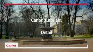 EOS 650D DSLR Camera - Power to see things differently - Capture Every Detail Tutorial