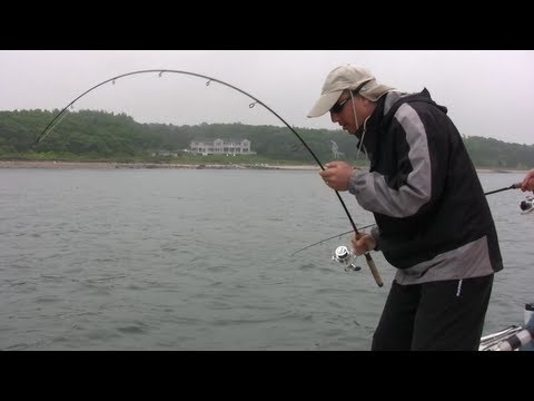 Saltwater Fishing in Buzzards Bay for Sea Bass