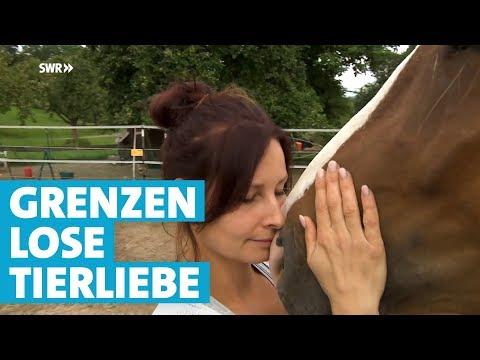 Tierhospiz Villa Anima - Zuflucht für alte und kranke Tiere | Landesschau Baden-Württemberg