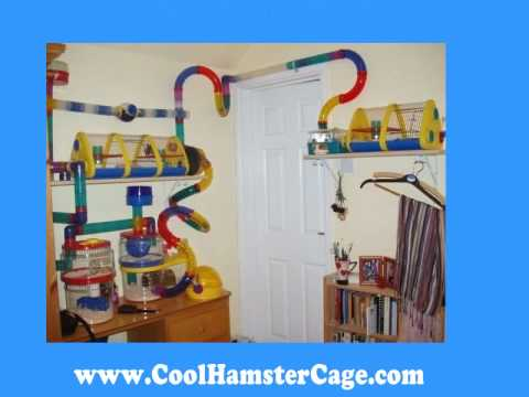 Crazy Cool Hamster Cages Super Pet Crittertrail