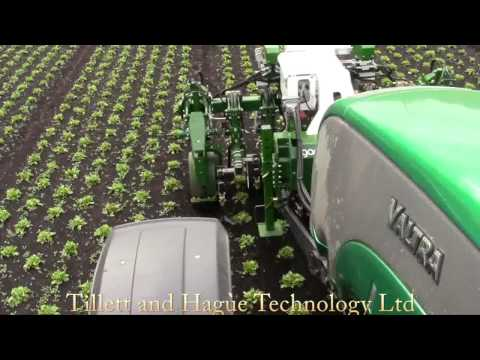 20 row electrically powered In-Row weeder