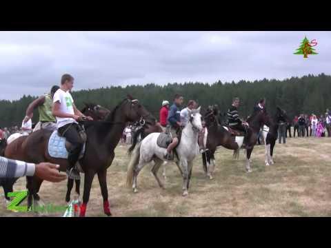Trka konja-Tić polje-22.07.2012