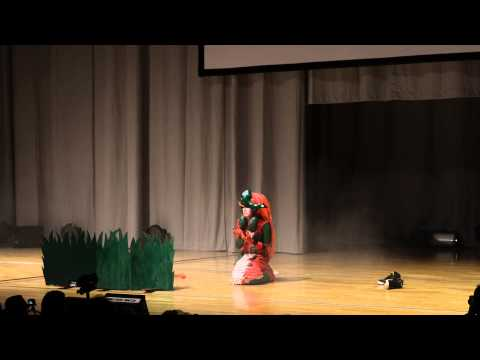 DCM Finale 2013 Startnummer 15 - Koi Nami aus League of Legends