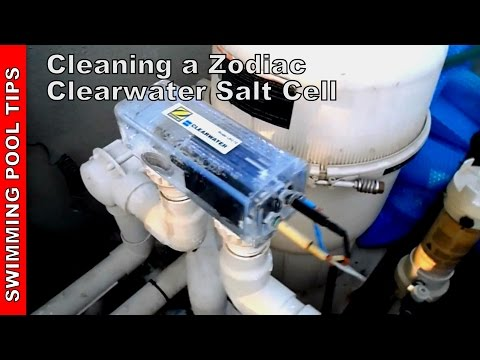 how to clean salt cell