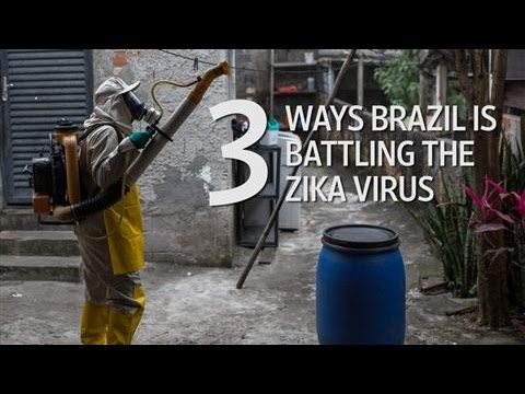 Three Ways Brazil Is Battling the Zika Virus