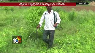 Young Farmer Rajender Cultivating Sri Gandham Trees With Using Ourganics | Warangal