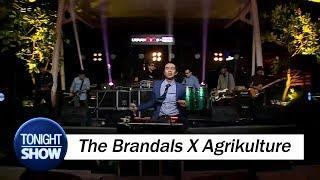 download lagu The Brandals X Agrikulture - Lepaskan Dan Lupakan gratis
