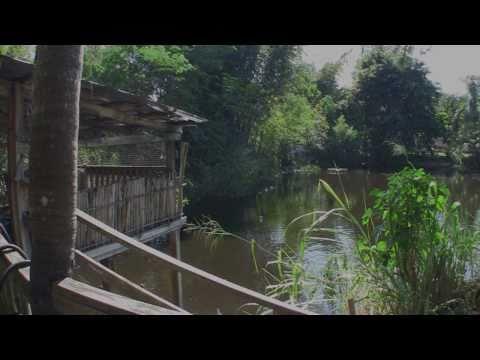 Biospharms Tilapia Pond Explained.wmv