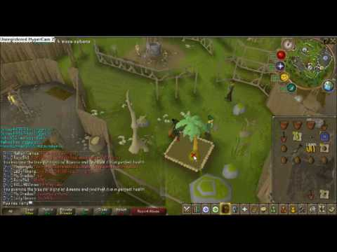 Runescape Farming Guide – Fruit tree + Calquat locations and how to get there
