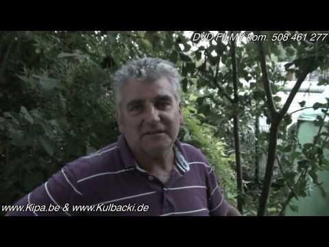 PORADY (tips) KULBACKICH, Tylko Natura -only Nature-  Www.Kipa.be - Www.Kulbacki.de