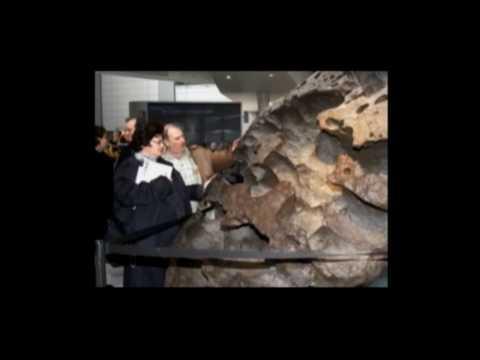 для найден второй по массе метеорит на земле термобелье Редфокс делится