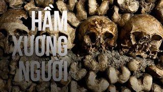 Weird stories | Giải mã bí ẩn ở hang chứa hàng nghìn bộ xương người | Hộp đen cuộc sống